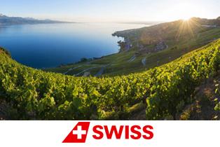 Осенний ценопад: в Женеву со SWISS