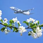 В весенне-летнем расписании «ЮТэйр» 350 ежедневных рейсов