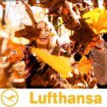 Золотая осень в США – бронируйте осеннюю поездку прямо сейчас