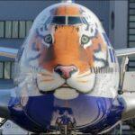 «Тигролет» авиакомпании «Россия» отметил свое трехлетие