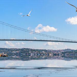 Авиабилеты в Турцию от авиакомпании Turkish Airlines